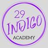 Instructor 29 Indigo Academy