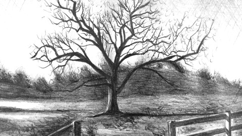 Intro to Graphite Pencil Drawing