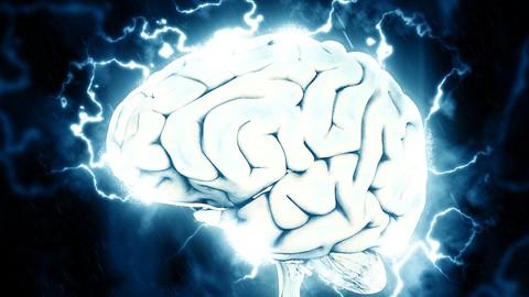 Empreendedorismo & Neurociências