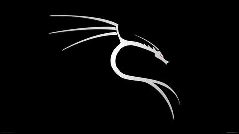 Web Penetration Testing Hacking Course using Kali linux O.S.