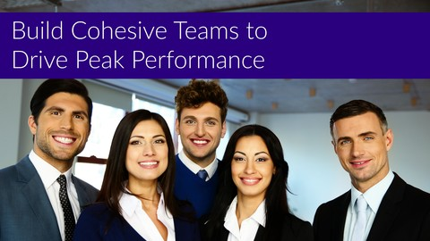Build Cohesive Teams to Drive Peak Performance
