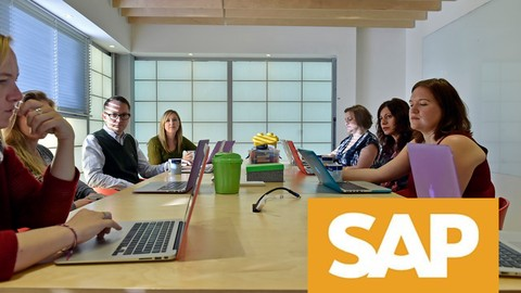 How to become a successful SAP functional consultant