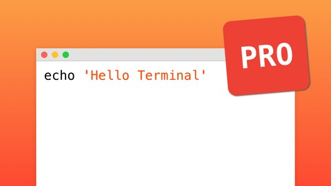 Learn Terminal from Beginner to Professional