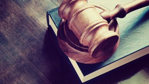 Tort Law for Businesspeople