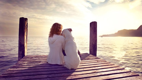 Animal Communication - Intermediate