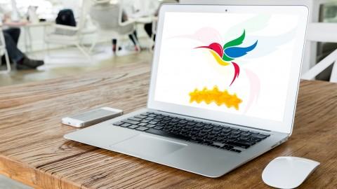 Beat Google HummingBird And Reclaim Your Google Ranking