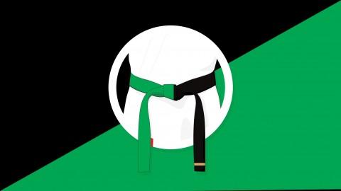 Six Sigma Green and Black Belt Combo