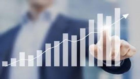 Corporate Cash Investment Strategies