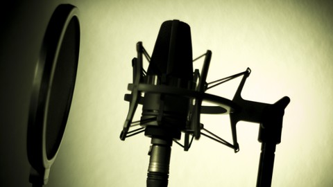 Voice Over Pro: How to Perform & Record Standout Voice Overs