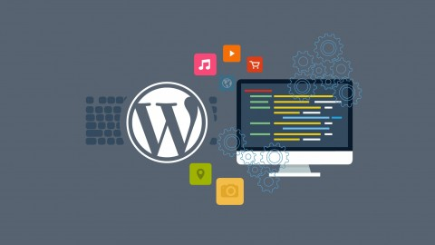 Building WordPress Plugins From Scratch