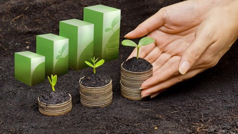 Exploring Non-Financial Sustainability Performance