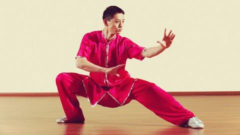 Kung Fu Shaolin Student Level 1 - Part 2