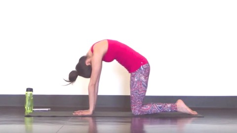 Yoga for Scoliosis - SarahBethYoga