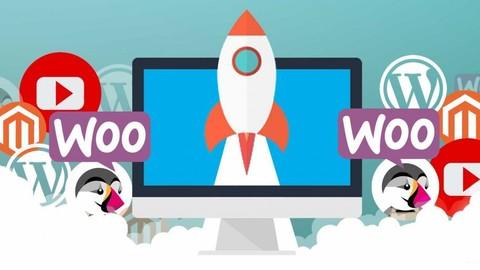 Corso SEO completo | Da Wordpress ai moderni sistemi Engine