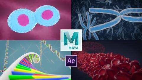 3D Medical Animation in Autodesk Maya