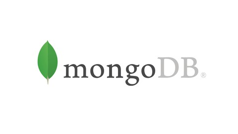MongoDB par la pratique