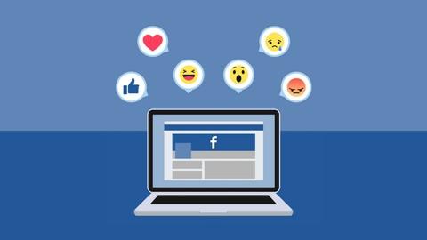 Facebook Seiten Meisterkurs: Der Komplette Facebook Kurs