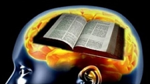 Biblical Cognitive Behavioral Therapy