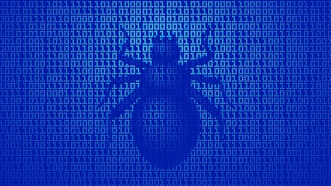 Bug Bounties: WhiteHat Hacking for Fun and Profit