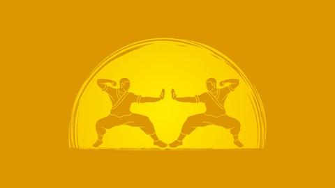 Kung Fu Shaolin Student Level 2 - Part 2