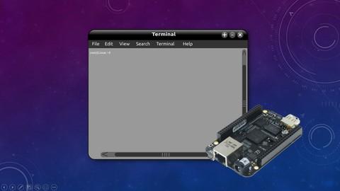 Linux device driver programming using Beaglebone Black(LDD1)