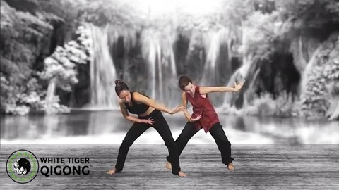White Tiger Qigong Presents: Qigong for Worry and Anxiety
