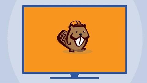 Wordpress-Seiten erstellt mit dem Beaver Builder