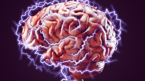 Neuroplasticity: Everything you need to know!