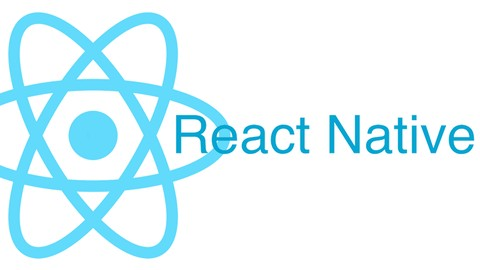 The Practical Guide to React Native