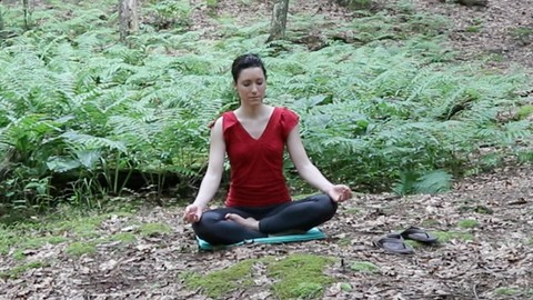 Foundation Skills for a Successful Meditation Practice