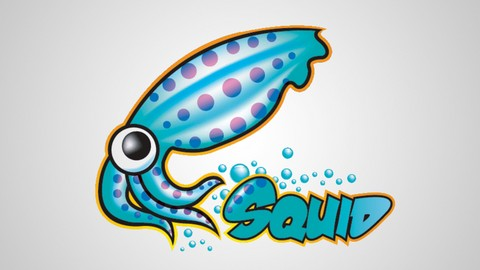 Squid Proxy Server On Linux: Anonymous browsing & filtering