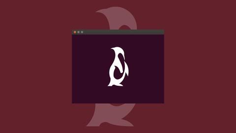 Linux Basics For Beginners.