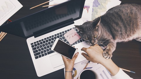 Real Ways To Earn Online From Home.