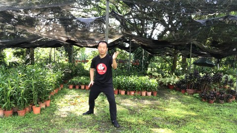 Tai Chi Chen Style 22 for Beginner-Strengthens Mind and Body