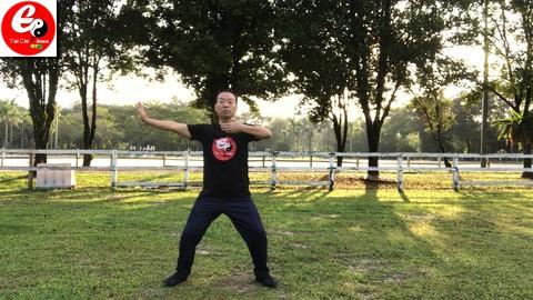 Tai Chi Qi Gong Fitness for Office -Ba Duan Jin Qi Gong