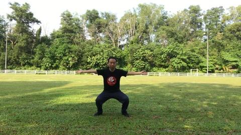 Tai Chi Yi Jin Jing-Muscle and Tendon Enhancement for Office