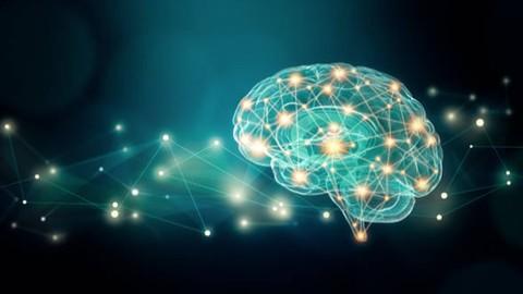 Neuroplasticity: The Ultimate Brain Rewiring Formula 3.0 ®