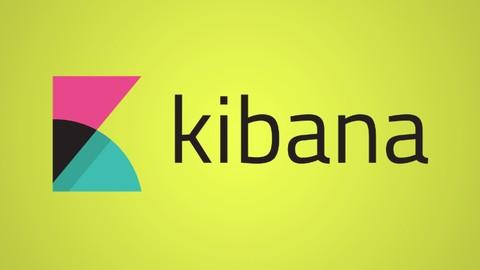 Kibana Visualization Beginner To Pro (ELK & ElasticSearch)