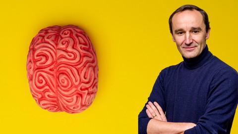 Neuroplasticidade:  Como Reconectar O Seu Cérebro