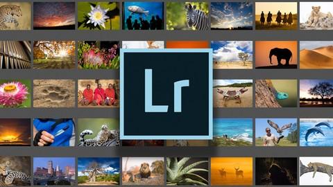 Adobe Lightroom Classic - Beginner Level