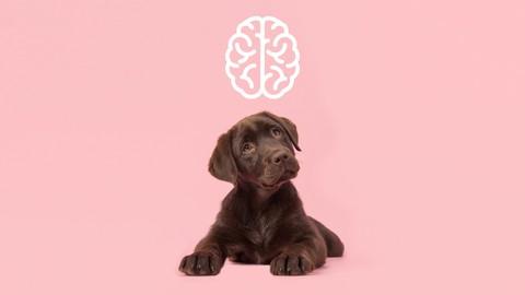 Hundepsychologie von A bis Z