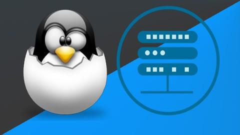 Master Linux Server Professional con  Fedora Server y Debian