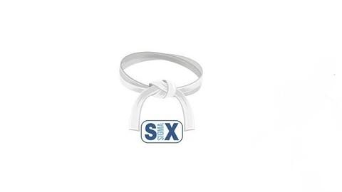 SIX SIGMA - WHITE BELT