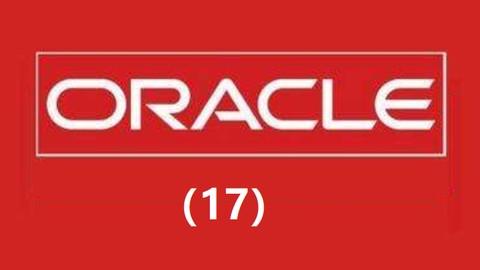 赵强老师:Oracle数据库从零开始 17