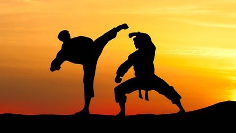 Kung Fu Shaolin Student Level 3 - Part 1