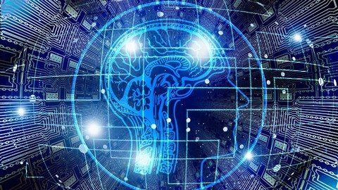 Fully Accredited Professional Neuroplasticity Diploma Course