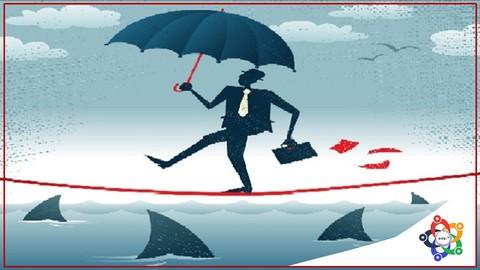 Risk Management Professional PMI-RMP® Exam Simulator