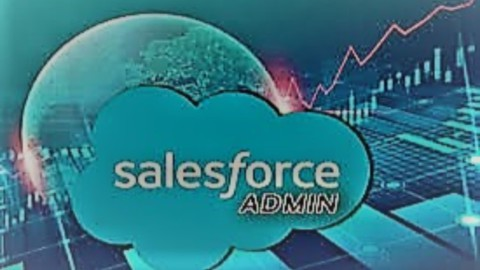 The Complete Salesforce Administrator with Real time Project