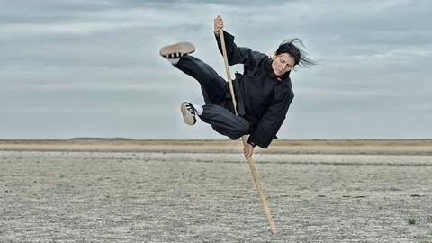 Kung Fu Shaolin Staff Level 3 - Part 1