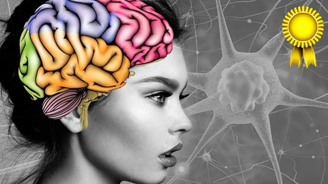 Neuroplasticity: Changing your Brain for Improving your Life